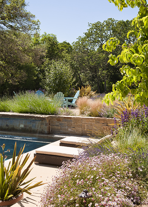 pool landscaping with fire pit seating area