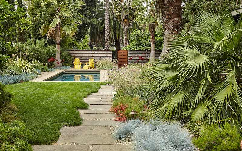 pathway leading to pool with palms, grasses, and perennials