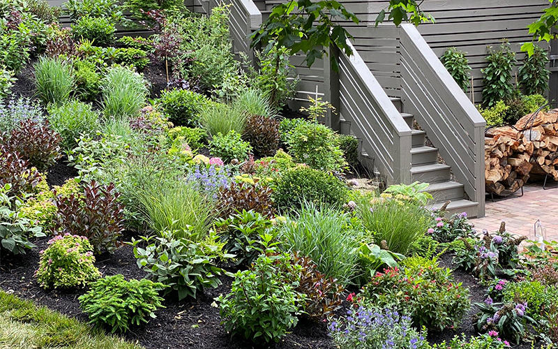 colorful tapestry of plants next to a deck stairway