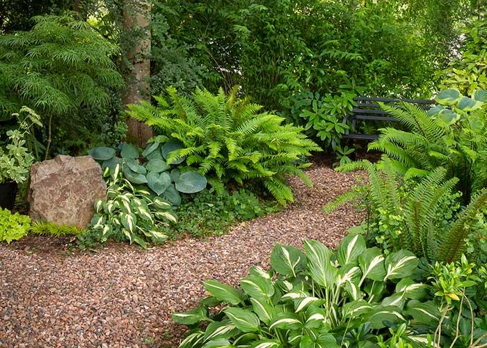 Woodland-Garden_3030M_7x5