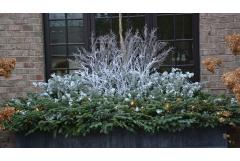Winter Windowboxes: Find Your Style