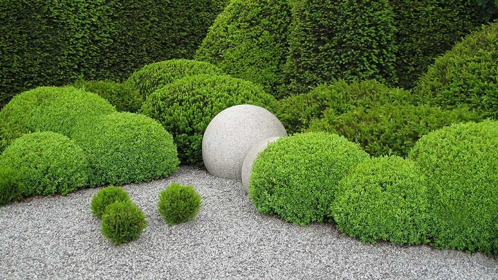 10 Things Topiary Lovers Should Know Be Inspired