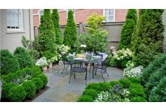 Small Space, Big Solutions: Planting for Privacy