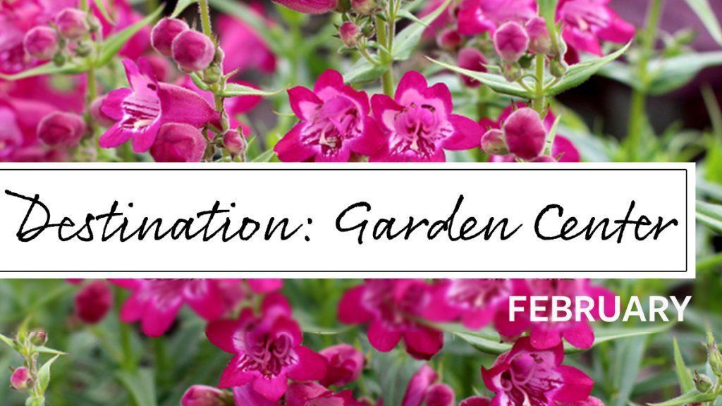 Destination Garden Center: Storytime!