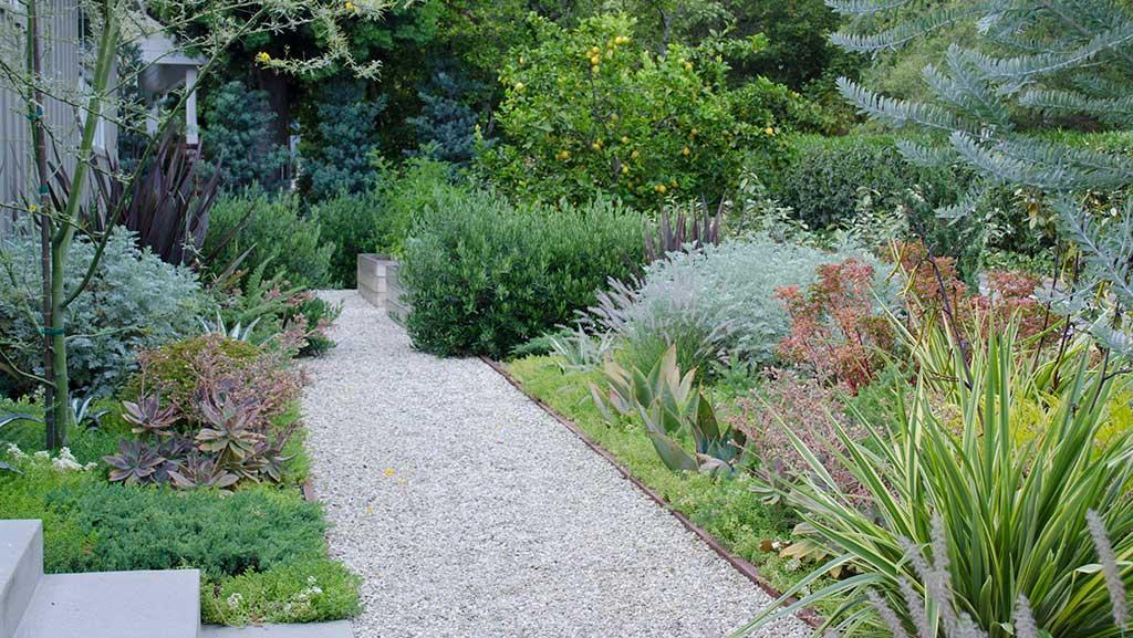 Designer Ideas for Inspired Pathway Plantings