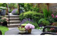 Create a Scented Patio (Z: 8 - 11)