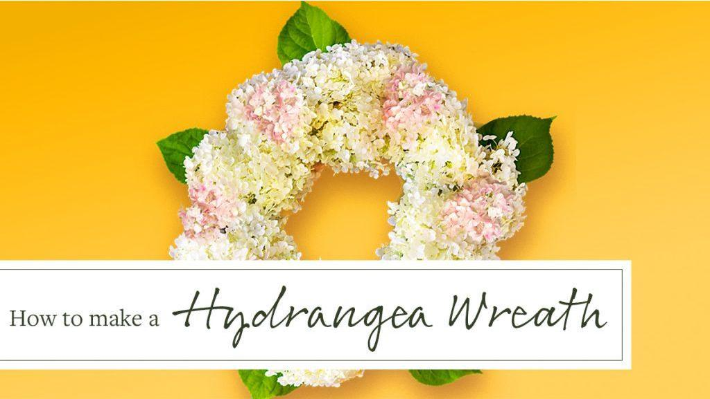 Make a Fresh Hydrangea Flower Wreath