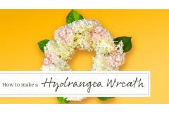Make a Fresh Hydrangea Flower Wreath