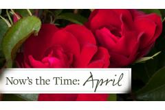 Now's the Time: April