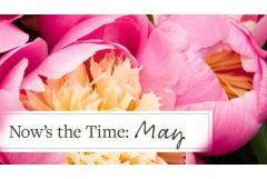 Now's the Time: May