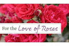 For the Love of Roses