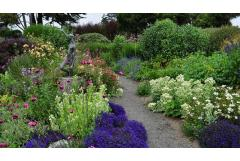 An Inspiring California Garden to Visit