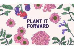 Let's Plant It Forward