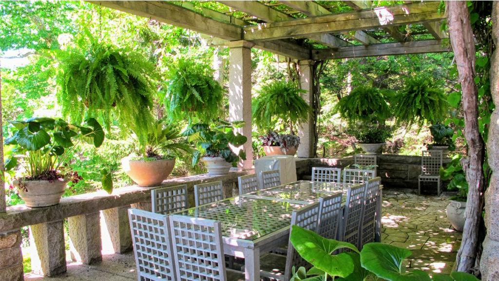 Dress Up The Porch With Ferns Be Inspired