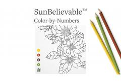 Color Me Happy: SunBelievable™ Paint-by-Number Project