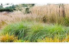 5 Ways To Design With Ornamental Grasses