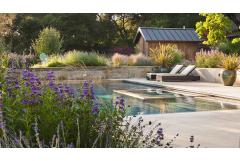 pool landscaping and outdoor seating