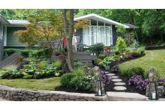 shady front yard garden with purples and green foliage, and Japanese maples