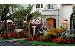 Curb Appeal Solutions: Dealing with a shallow front lot