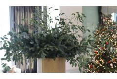 Winter Decorating with Evergreen Clippings