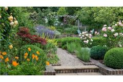 Get the Look: English Cottage Garden (Zone: 8 - 11)