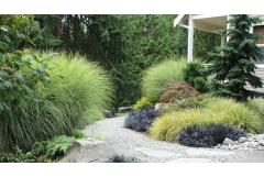 Curb Appeal Solutions: Dealing with a spectacular natural setting