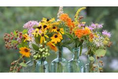 10 Fabulous Flowers to Pick This Month