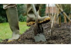 Dirty Little Secrets (or how to get great soil)