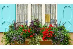 Second Story Window Box Plant Ideas