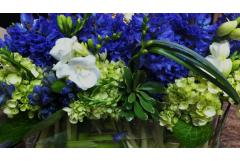 Making Arrangements: Hydrangeas