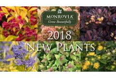 Our 2018 New Plants Collection!