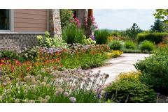 Curb Appeal Solutions: Dealing with Hardscape