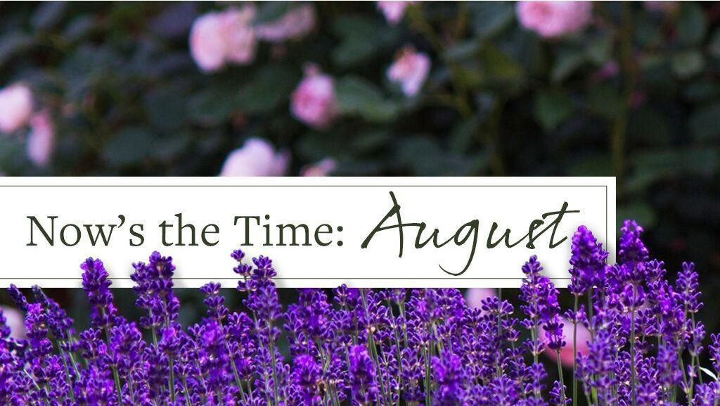 Now's the Time: August