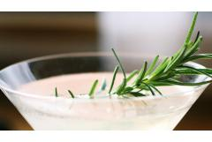 Stir It Up: 4 Delicious Rosemary Cocktail Recipes