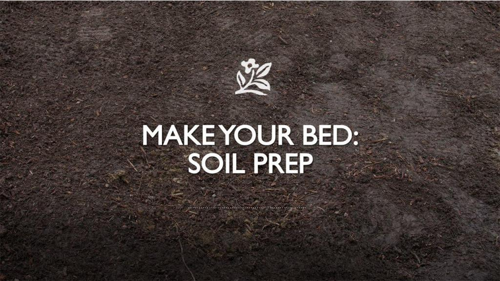 Making Your Bed: Soil Prep