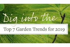 Top 7 Garden Trends That Made the Cut for 2019
