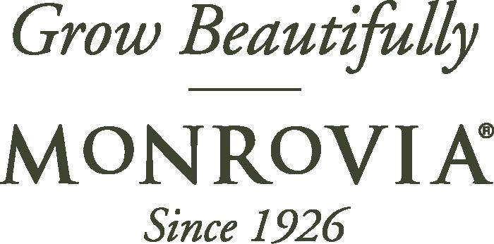 Grow Beautifully   Monrovia   Since 1926